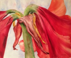 "Amaryllis • 15"" x 19"" Watercolor/ 140 lb Arches"