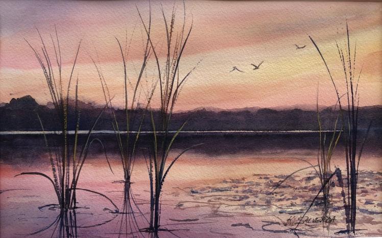 Sunset Evening Flight